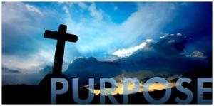 purpose-11